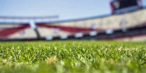 La plataforma digital como servicio de Microsoft Sports facilita la transformación digital de las entidades deportivas