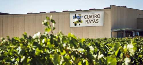 Bodega Cuatro Rayas ha confiado en las tecnologías y soluciones Microsoft y en TIPSA uno de sus proyectos clave de transformación digital