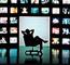 Sogecable desarrolla su infraestructura de transmisión de vídeo HD con Colt